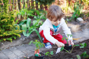Fun Tips for Starting a Family Garden Planting with Kids Copperleaf Community