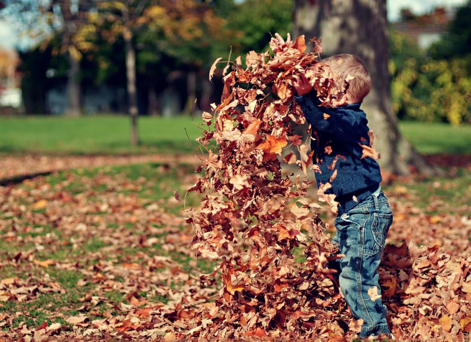 Fun Fall Activities in Denver